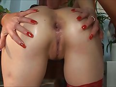 Anal, Cumshot, Old and Young, Mature